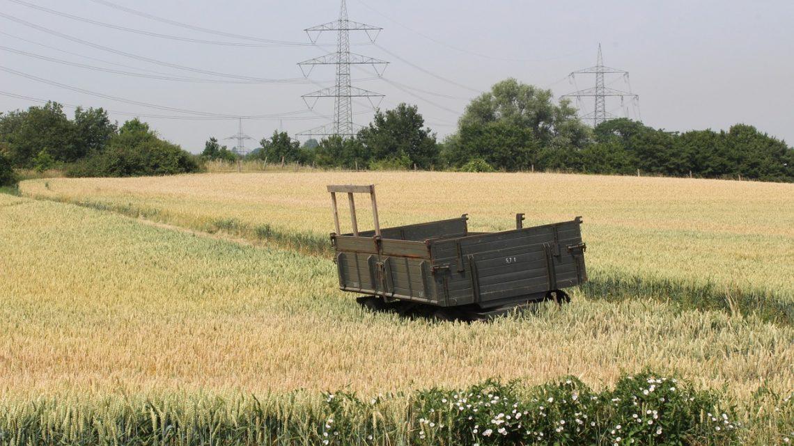Nawozy dla rolnictwa