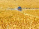 Rozwiązania dla rolnictwa - warto zainwestować w hale