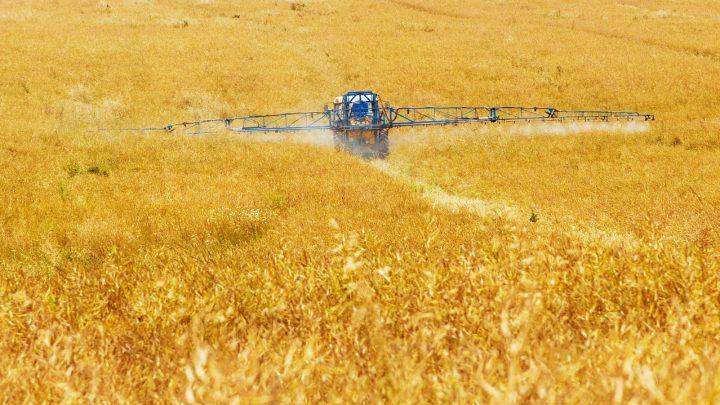 Rozwiązania dla rolnictwa – warto zainwestować w hale