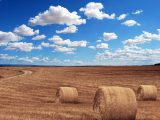 Doświadczenie w produkcji maszyn rolniczych