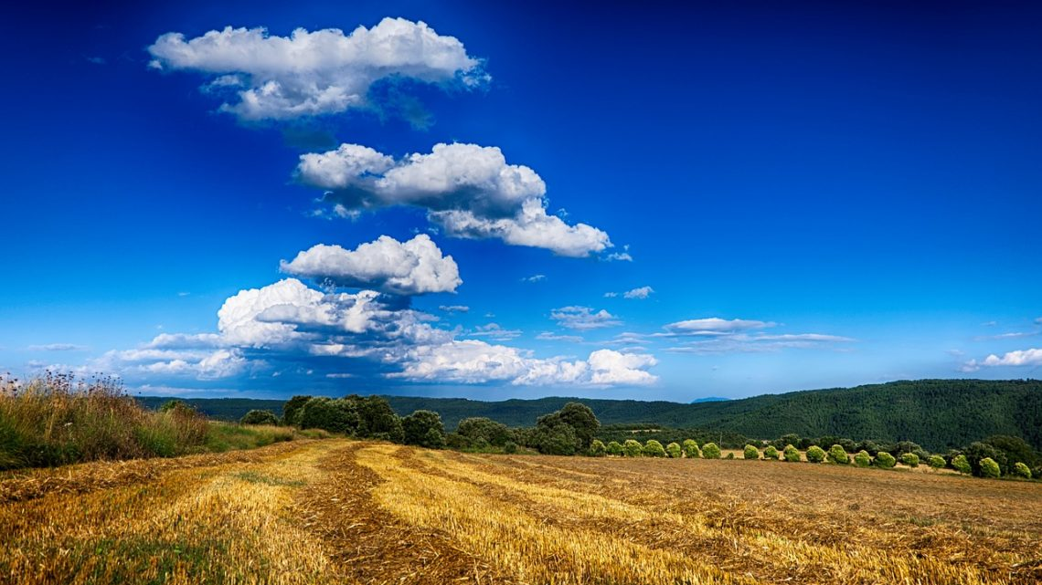 Maszyny rolnicze – producenci mieszalników