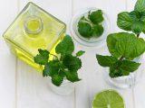 Zielarnia internetowa - zioła i suplementy diety