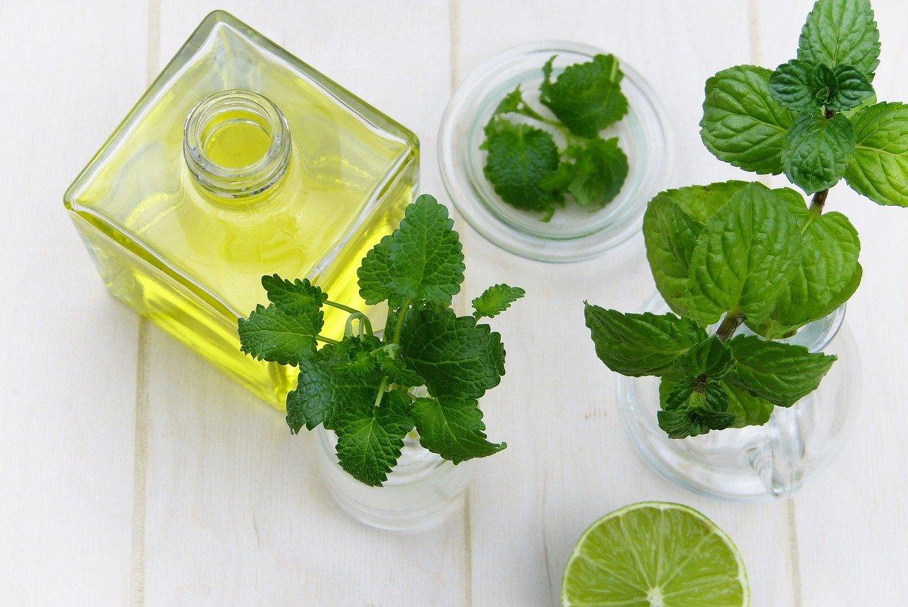 Zielarnia internetowa – zioła i suplementy diety